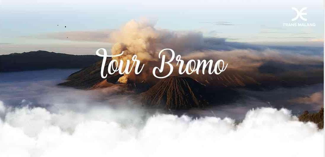 Bromo-1 Tour Bromo