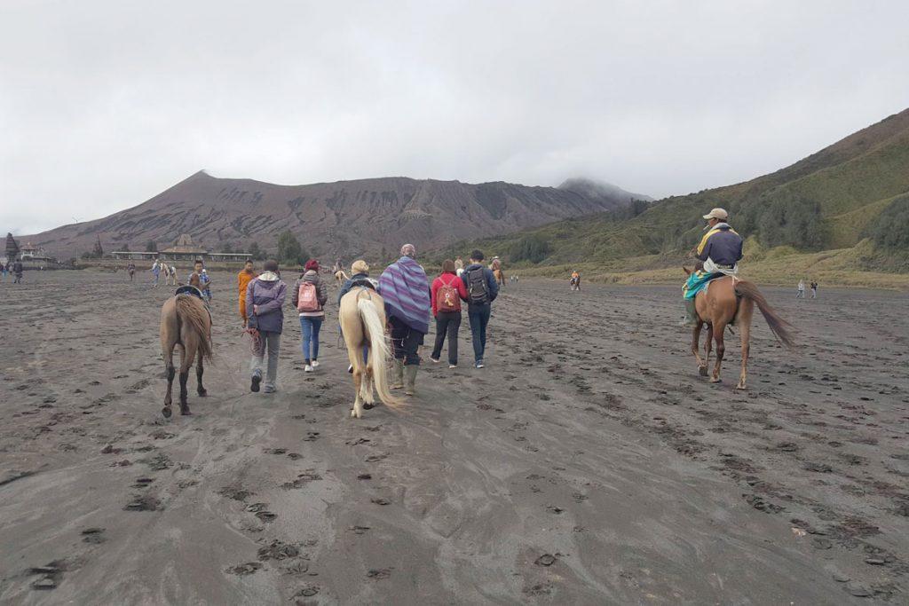 Wisata Malang Bromo Berkuda Menuju Kawah Bromo